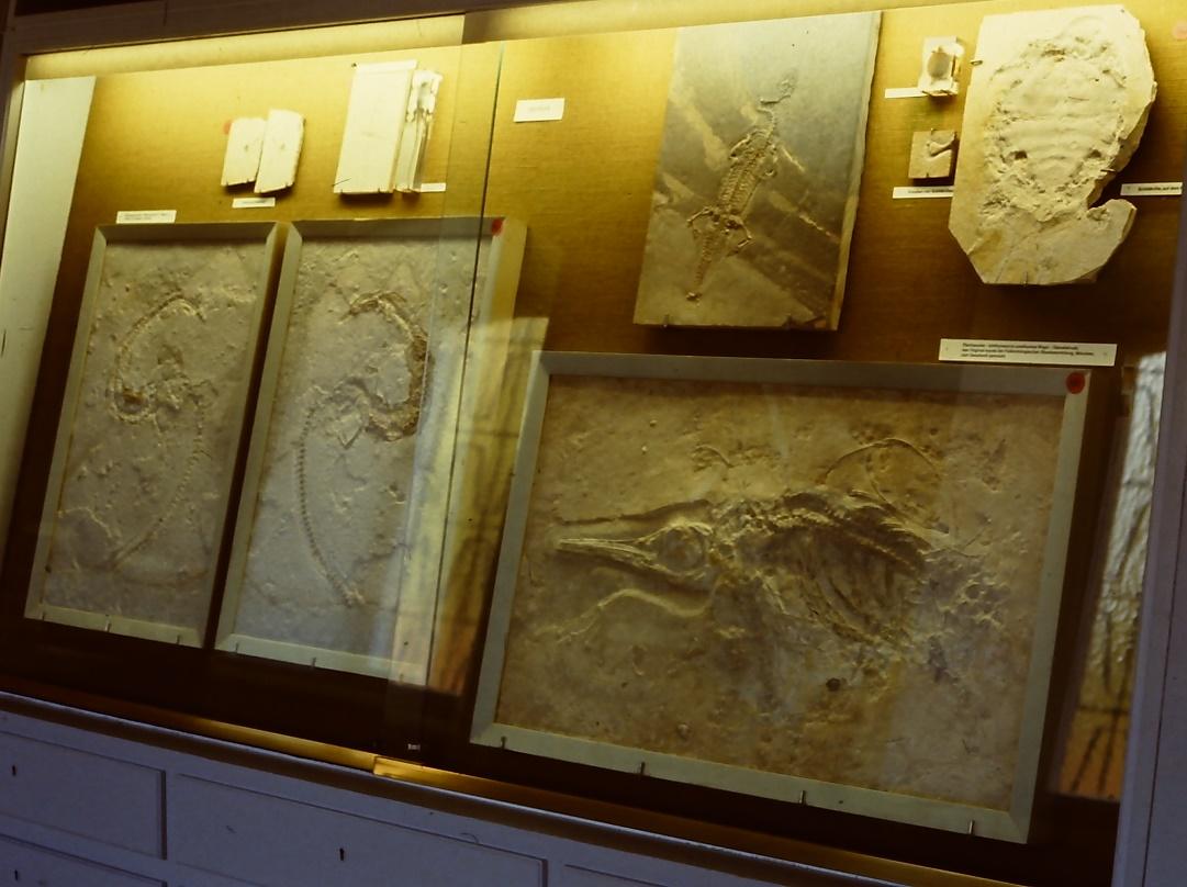 sector conservación de obras de arte